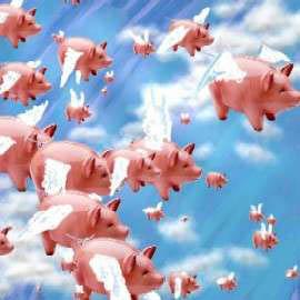 cerdos que vuelan